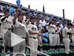 第98回全国高校野球選手権大会静岡県予選<<<
